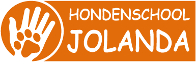 Leerzame hondentraining in Almere
